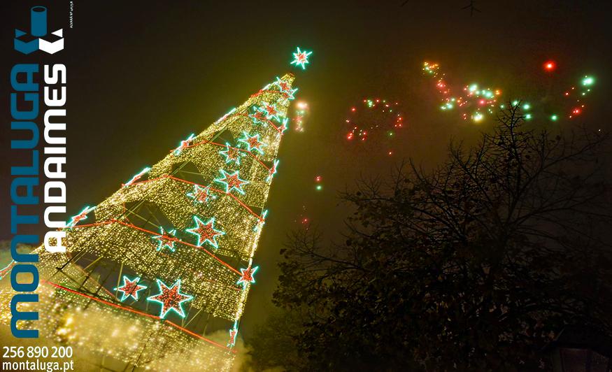 Árvore de Natal - Amarante